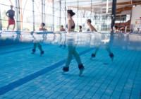 Les sports aquatiques : sports collectifs interactifs