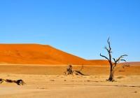 Les sites namibiens à explorer lors d'un circuit de découverte