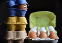 Les bienfaits des œufs bio pour la santé et la silhouette