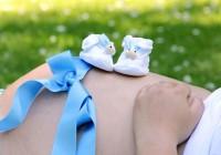 Premier trimestre de grossesse : le check-list des choses à faire