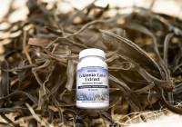 Ecklonia cava, un complément alimentaire efficace et bénéfique
