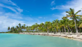 Que faire lors d'un séjour en Guadeloupe ?