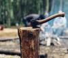 Où se procurer du bois pour son foyer d'intérieur ?